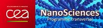 Programme Nanosciences